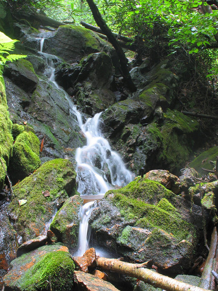 Coon Den Falls (middle section)