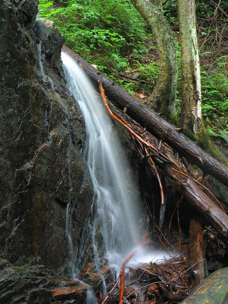 Coon Den Falls (lower section)