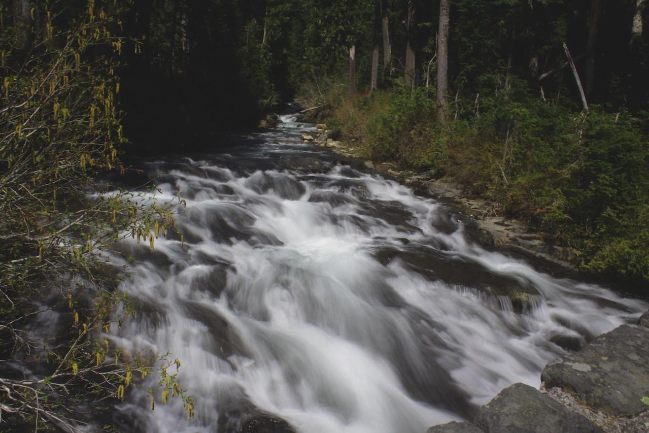 Paradise River at Narada Falls