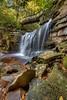 Elakala Falls 2060 w49