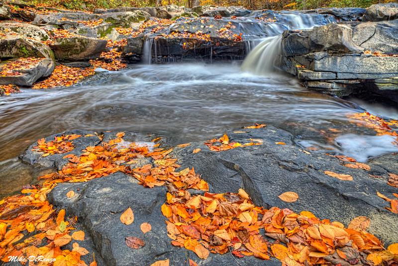 Falling Brook in Autumn 5416 w46