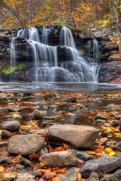 Brush Creek Autumn. 5475 w46