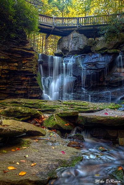 Elakala Falls Trail 2310 w46