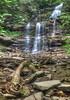 Ganoga Falls  3976 w31