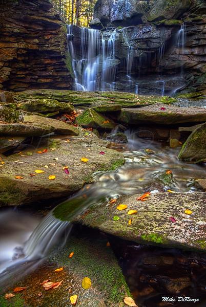 Elakala Autumn Cascade 2294 w49