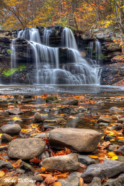 Brush Creek Autumn 5475 w46