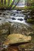 Pelham Falls Brook 2028