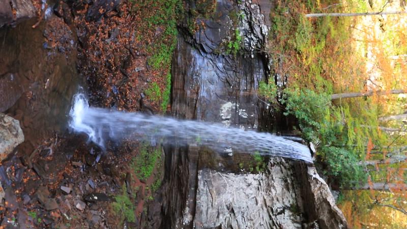 Hills Creek Lower Falls 4362