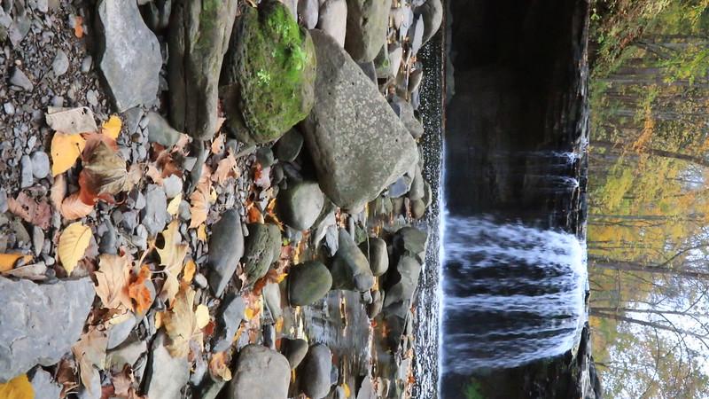 Brush Creek Falls 5489