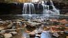 Brush Creek Falls 5524