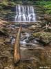 Cayuga Falls 3939 w31