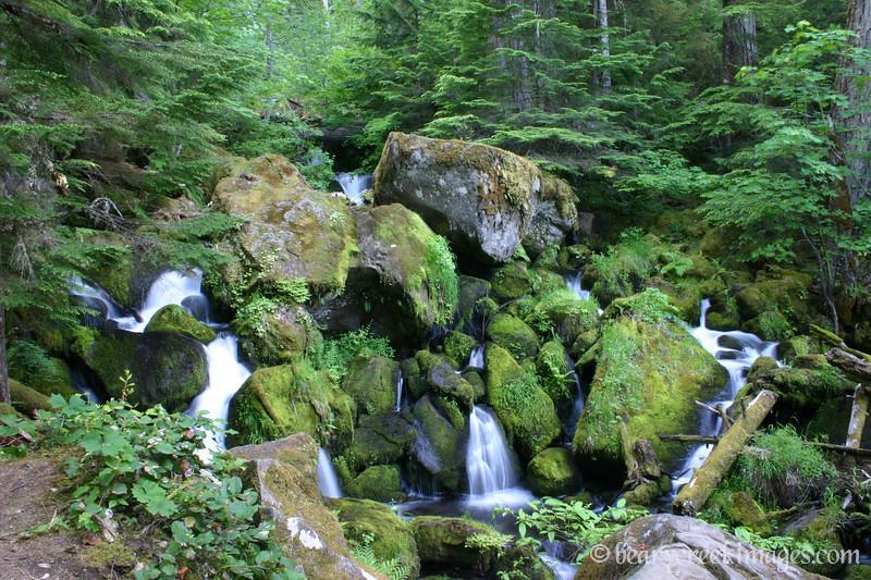 Cascades below Watson Falls, Oregon