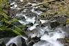 Downstream - Starvation Creek, Columbia River Gorge, Oregon