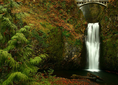 Lower Multnomah Falls