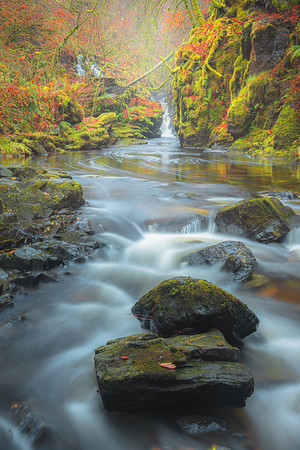 Birks of Aberfeldy, Scotland