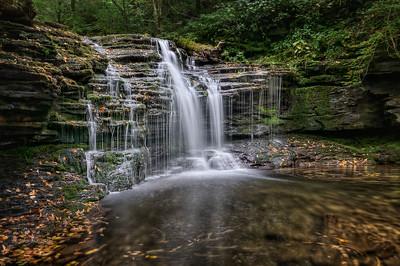 Dark Forest Falls