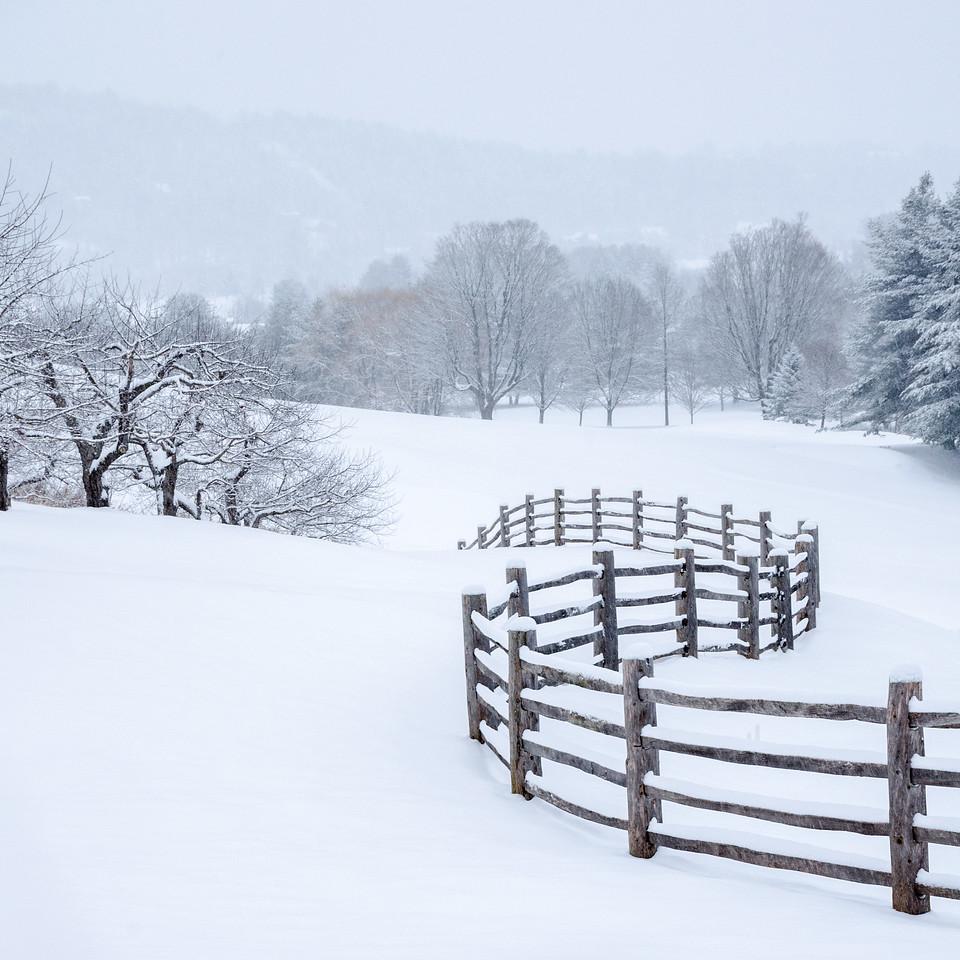Fresh Snow in Vermont