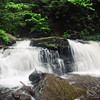 Ricketts Glenn Waterfall Picture