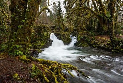 A broader look at Falls Creek Falls in Quinault