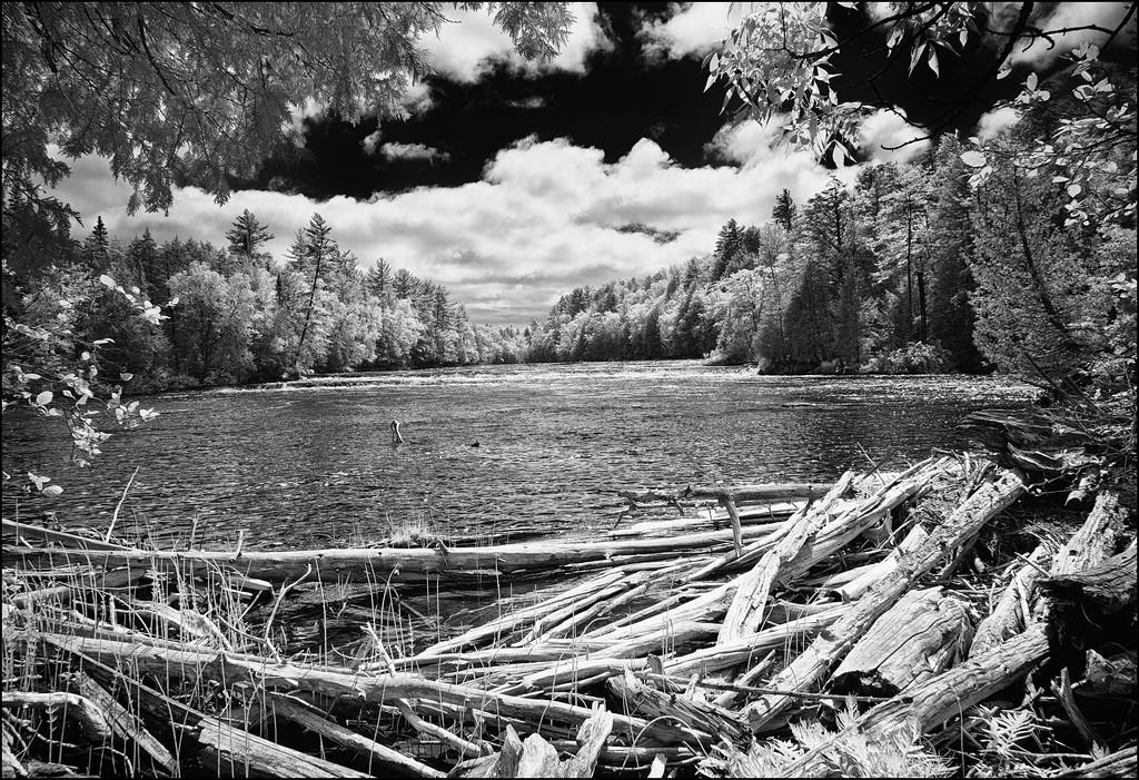 Timber Flowage