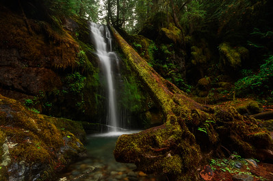 Parker Falls in the Umpqua National Forest, Oregon.
