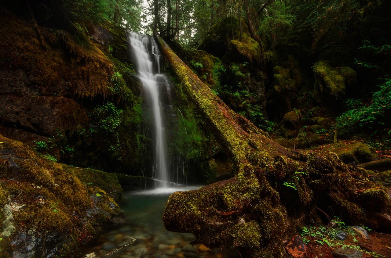 Parker Falls in the Umpqua National Forest, Oregon.