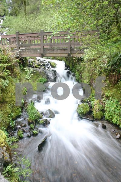 Wahkeena Creek, Columbia River Gorge, Oregon 20
