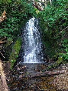 Fern Rock Falls