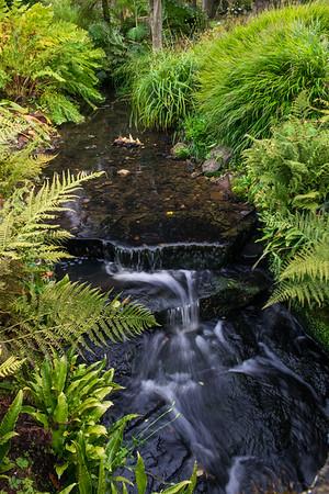 Tiny Waterfall_Harlow Carr