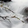 Detail, Wahkeena Falls in Winter