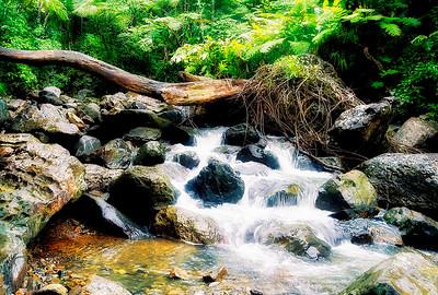 Rio Mina Falls