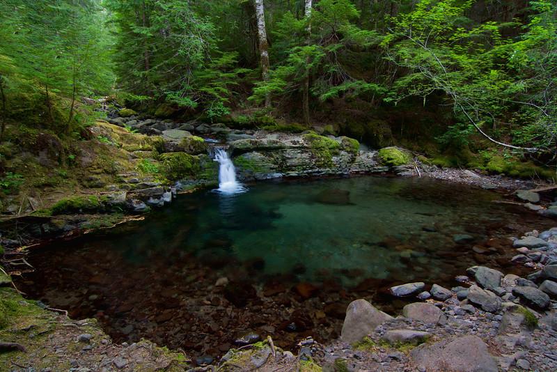 ~ Neytiri's Pool ~