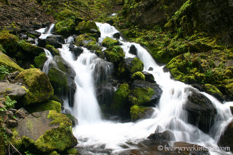 Starvation Creek, Columbia River Gorge, Oregon