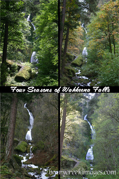 Four Season of Wahkeena Falls, Columbia River Gorge, Oregon