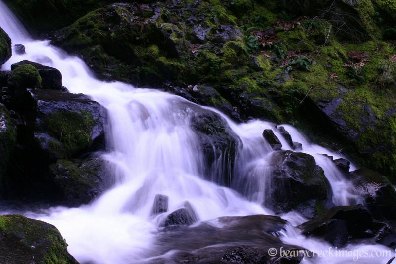 Below the Falls - Starvation Creek, Columbia River Gorge, Oregon