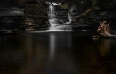 Secret Forest Falls