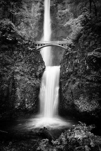 Multnomah Falls (portrait orientation)