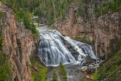 Yellowstone's Gibbon Falls