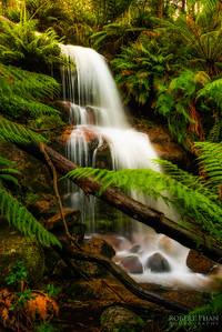 Cascade falls 1 - Victoria