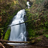 Waterfall near Tillamook, Oregon