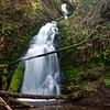 Waterfall near Tillamook, Oregon