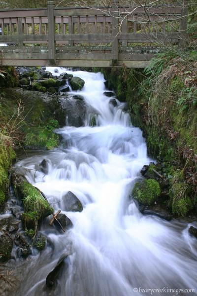 Below the Falls - Wahkeena Creek, Columbia River Gorge, Oregon