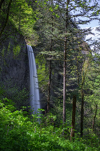 Latourell Falls in the Columbia River Gorge, Oregon.