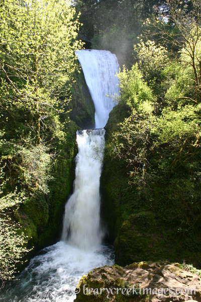 Bridal Veil Falls in the Spring, Columbia River Gorge, Oregon