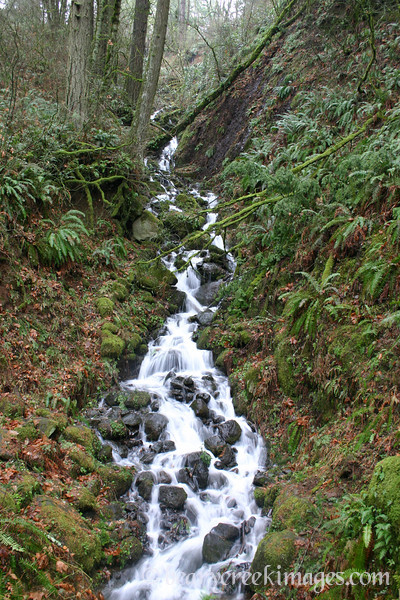 Tiny Winter Waterfall, Columbia River Gorge, Oregon