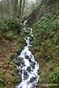 Tiny Winter Waterfall, Columbia River Gorge, Oregon