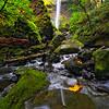 ~ Elowha Falls ~