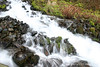 Below the Falls - Wahkeena Creek, Columbia River Gorge, Oregon