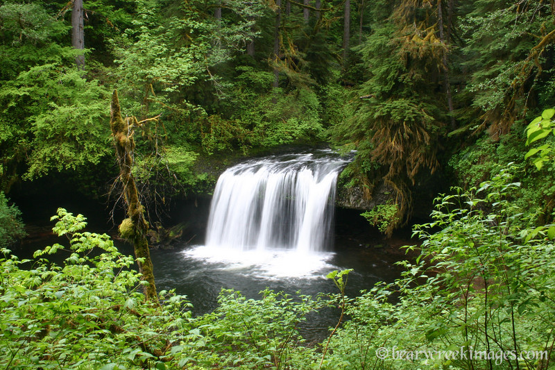Upper Butte Creek Falls, Cascade Mountains, Oregon