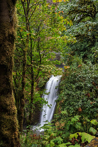 Multnomah Falls ~ Lower Cascade
